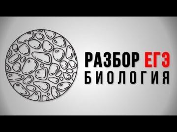 Подготовка к ЕГЭ по биологии 2018, 11 класс