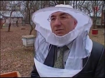 1. Уроки по пчеловодству / Пасека - организация, с чего начать