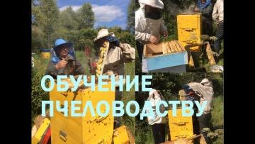 Учебная пасека для начинающих пчеловодов. Обучение.